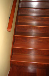 Brazilian Cherry Steps